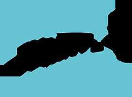 logo Valy Nela